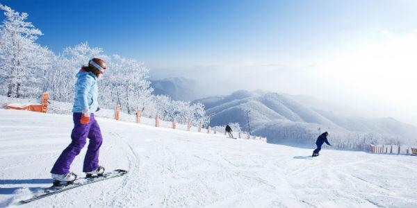 Hàn Quốc Tết Âm 2019 - SEOUL - TRƯỢT TUYẾT YANGJI PINE