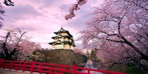 TOKYO - HAKONE - NÚI PHÚ SỸ - 5 Ngày 4 Đêm